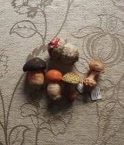 小さなキノコのセット 4