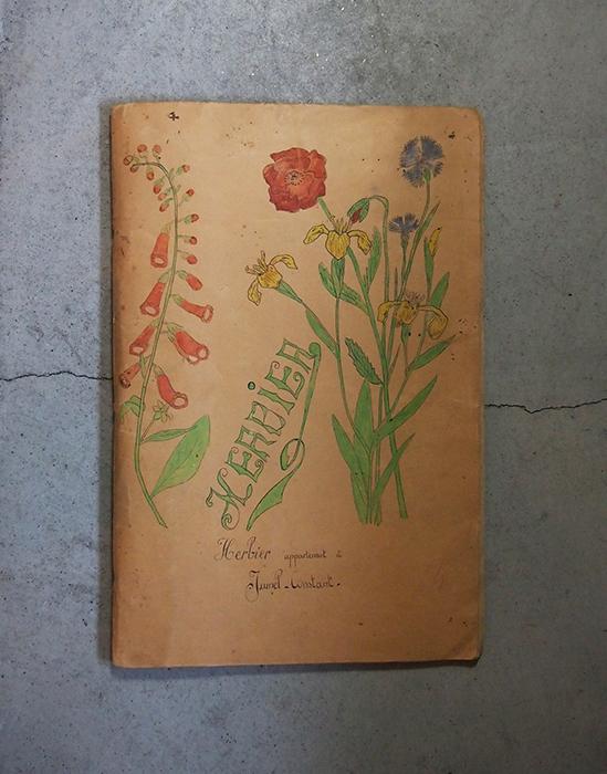 大きな押し花帳