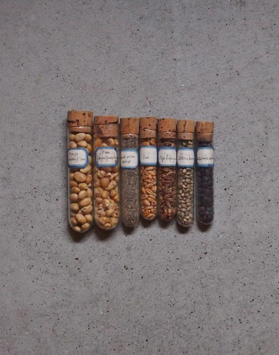 穀物が入った小さな試験管