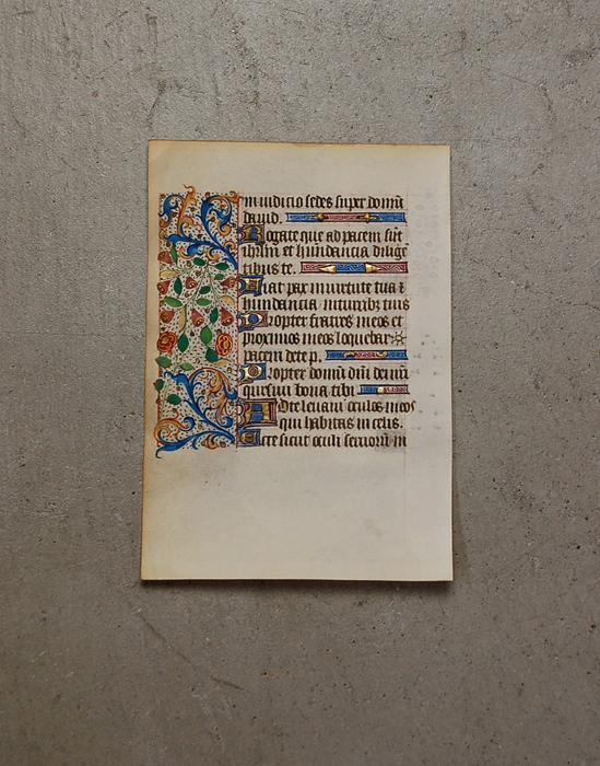 美しい装飾写本 3