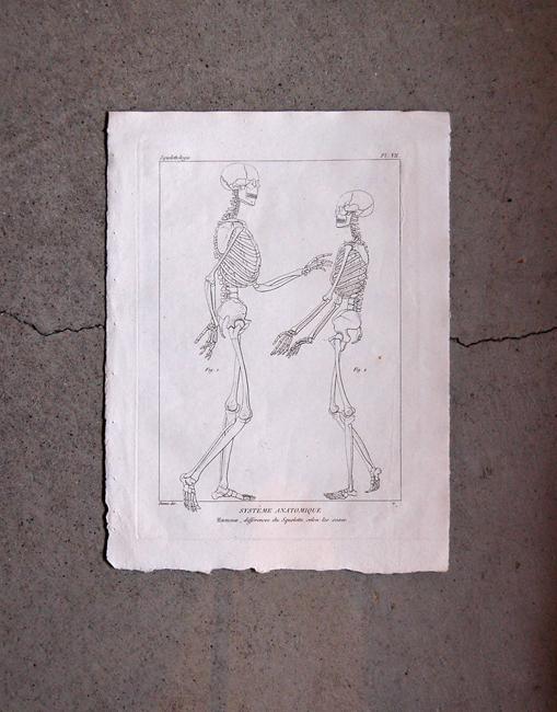 骨格版画 1