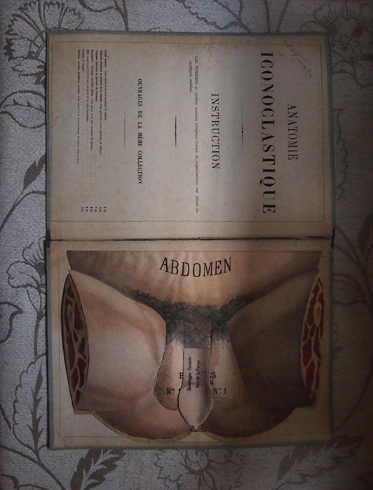 人体解剖図 ANATOMIE ICONOCLASTIQUE 1