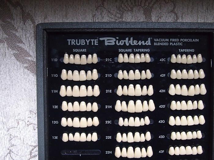 義歯のオブジェ 3