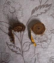 金糸の装飾リボン 2種