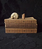 古書3冊と貝と鉱物の標本