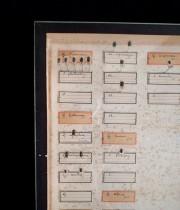 アンヴァンテール 虫の標本箱