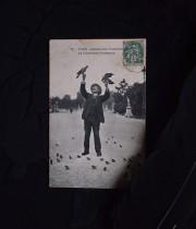 アンヴァンテール 鳥使い紳士のカード2枚と黒い羽