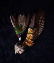 アンヴァンテール 装飾用羽根と標本箱