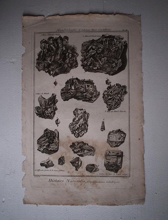 鉱物版画 Histoire Naturelle , Cristallisations métalliques 1