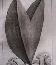 Buffon Histoire Naturelle minéraux tome III