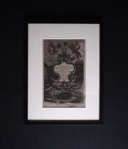 ヨンストンの図版  Insect