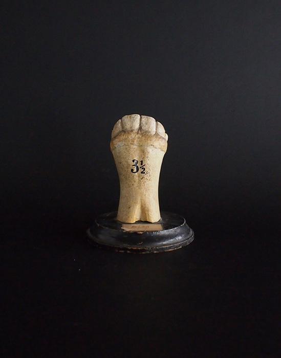 馬の歯の模型 A