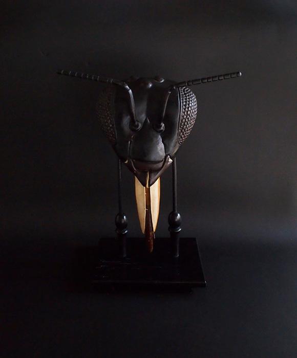 蜂の頭部模型