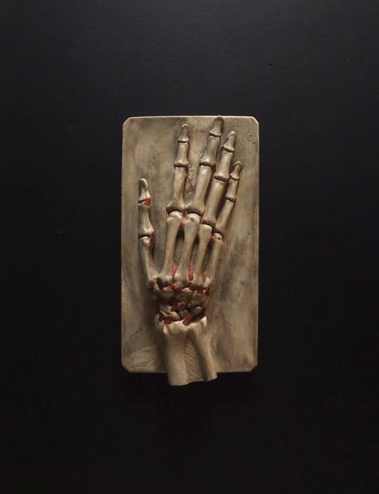 Modèle anatomique de la main
