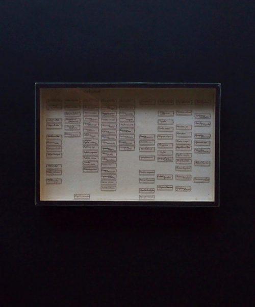 アンヴァンテール 標本箱