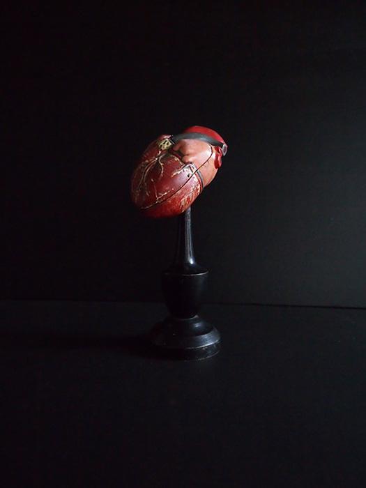 Modèle anatomique du cœur 3