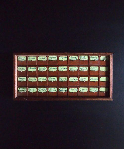 時計のパーツ・ボックス
