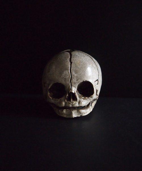 胎児の頭蓋骨模型