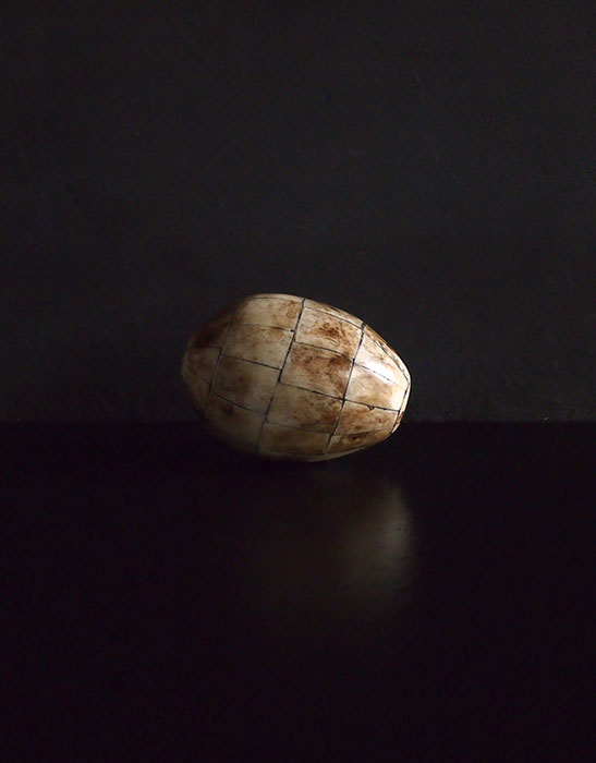 動物の角でできた卵