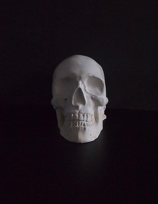石膏製頭蓋骨