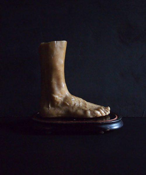Modèle de cire de pied humain