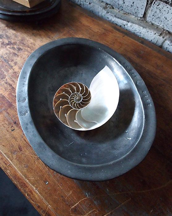 エタンのオーバル深皿