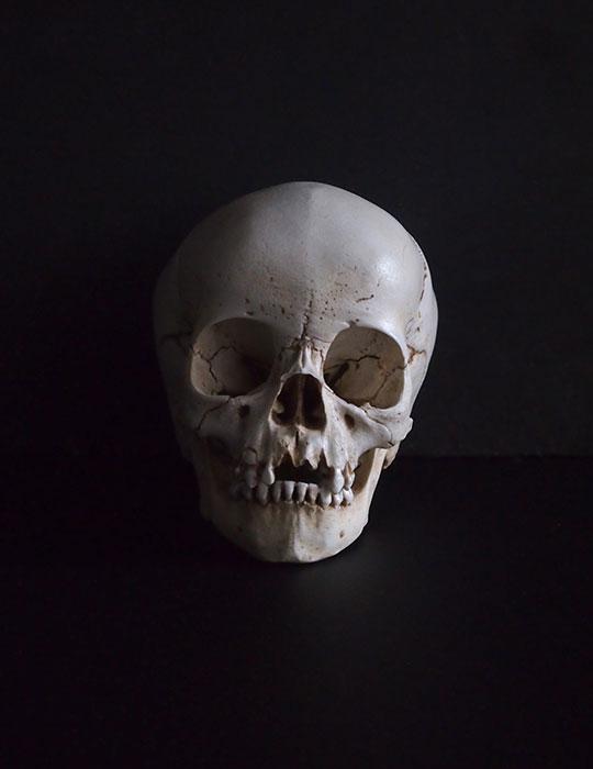 幼児の頭蓋骨オブジェ