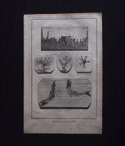 鉱物版画 Histoire Naturelle , Minéralogie 7