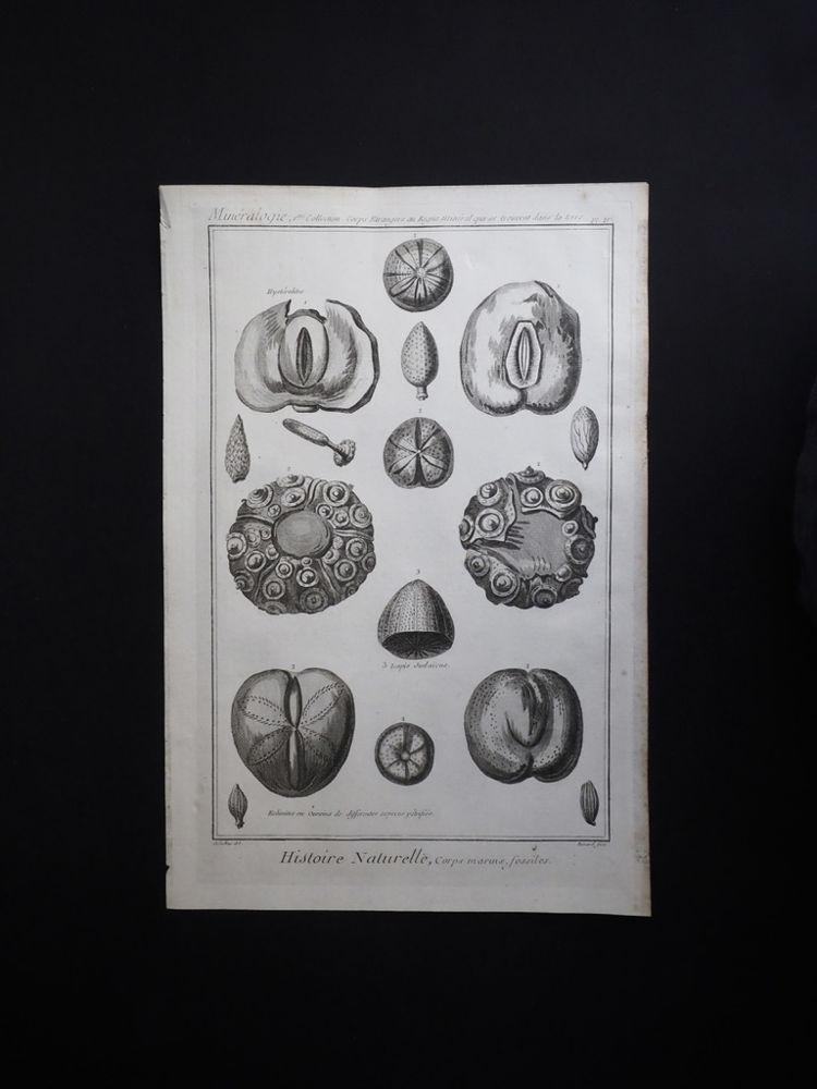 鉱物図版 Histoire Naturelle , Minéralogies 9