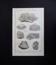 鉱物図版 Histoire Naturelle , Minéralogies 12