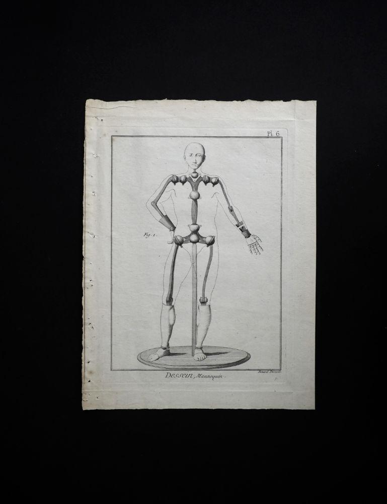 マヌカンの図版 Mannequin